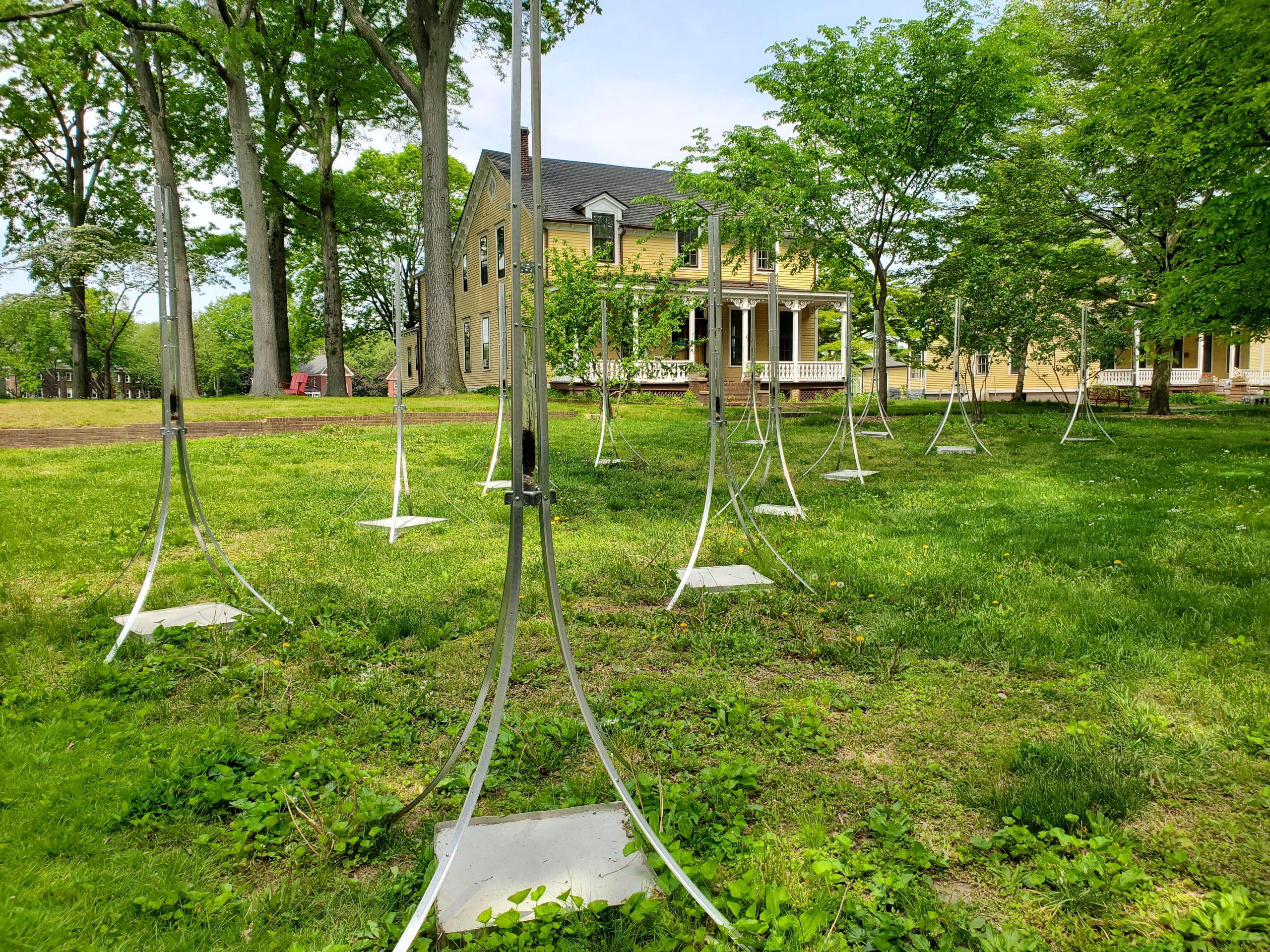 Garden Sentinels